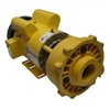 Coast Spa Yellow Pump Assembly, 5HP, 230 Volt, 14.0 Amp, 2 Speed