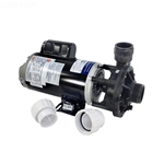 Aqua-Flo Flo-Master FMHP Pump Assembly - 1.0 HP, 115 Volt, 2 Speed