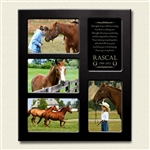 Personalized Horse Memorial Photo Frame