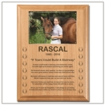 If Tears Poem Wood Plaque For Horses