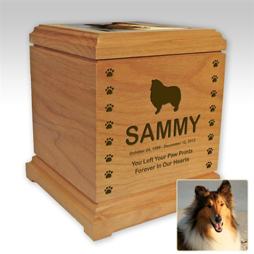 Photo Pet Urns For Dogs