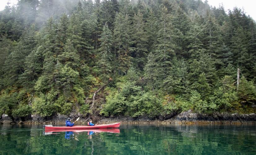 Exclusive Half Day Sitka Sound Cruise and Paddle Tour