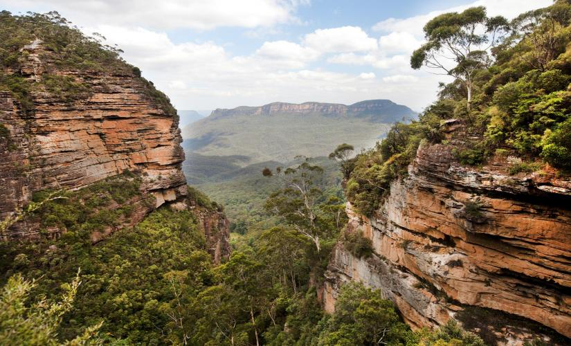 Blue Mountains National Park Trek in Sydney (Featherdale Wildlife Park, Scenic World)