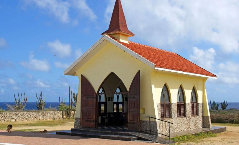 Island Tour in Aruba Highlights Landmarks Bus (Aloe Vera Factory Museum, Casibari Rock Formations)