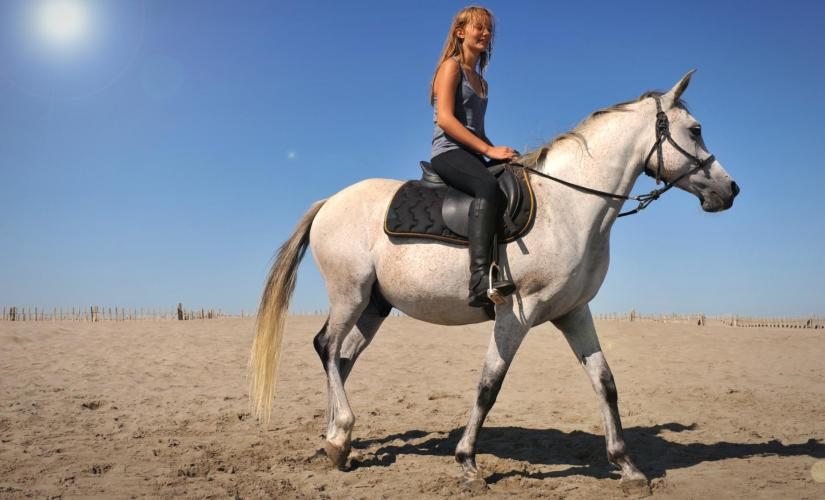 Northeast Coast and Sand Dunes in Aruba Horseback Ride Countryside Tierra del Sol Golf Course
