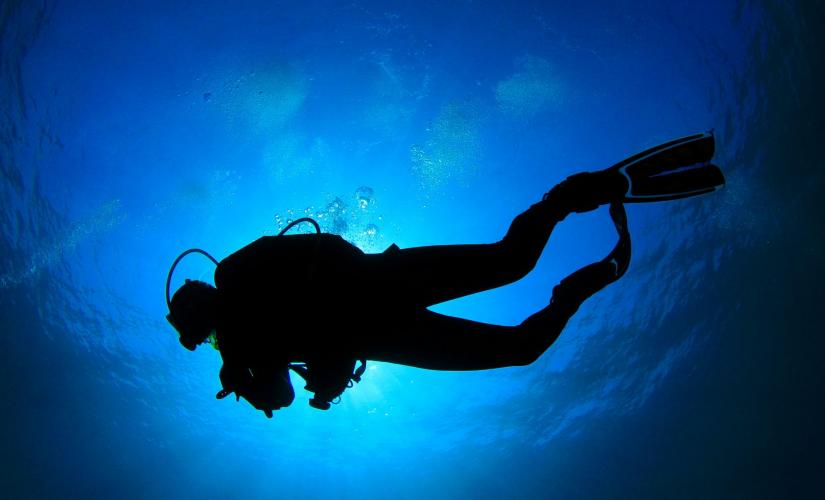 Discover Scuba in Barbados Introductory Lessons Diving Fish and Marine Life