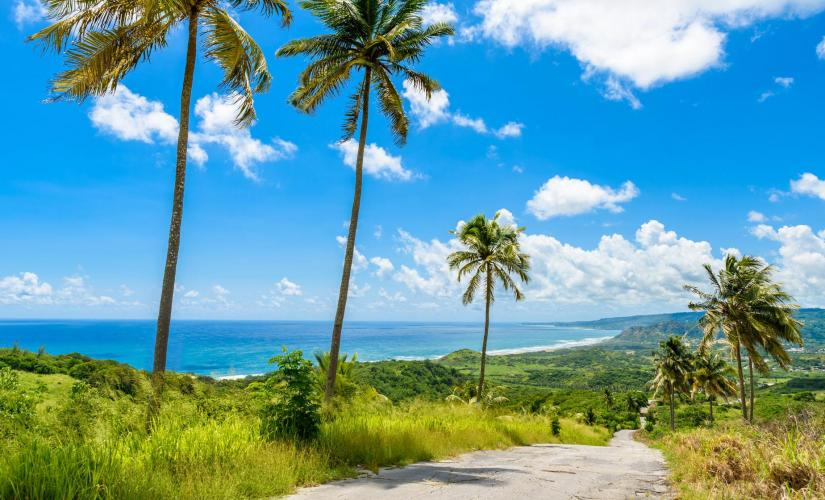 Bajan Paradise in Barbados East Coast Sightseeing Cherry Tree Hill Garrison Historic Area