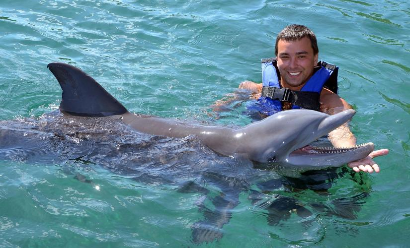 Dolphin Snorkeling and Swimming Day Tour at Chankanaab Park in Cozumel