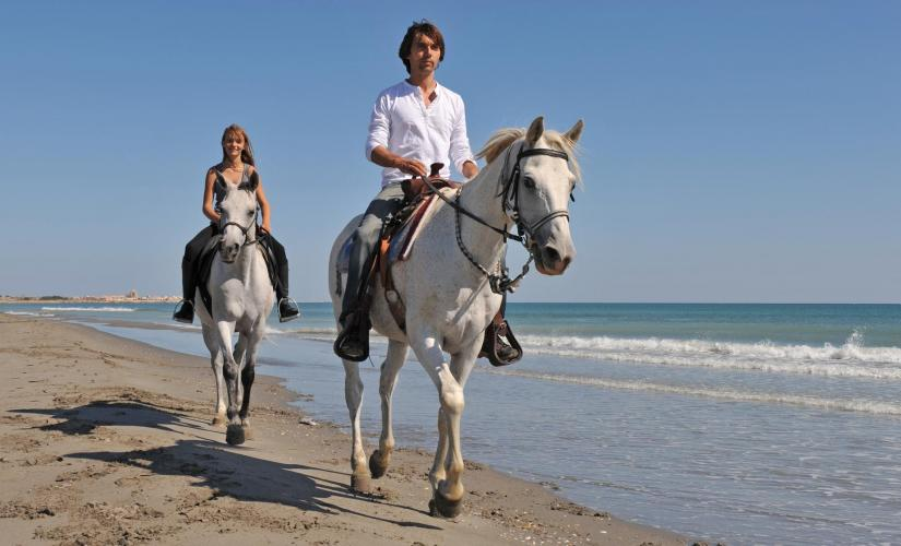Horseback Riding Eco Tour in Freeport (Grand Bahama)