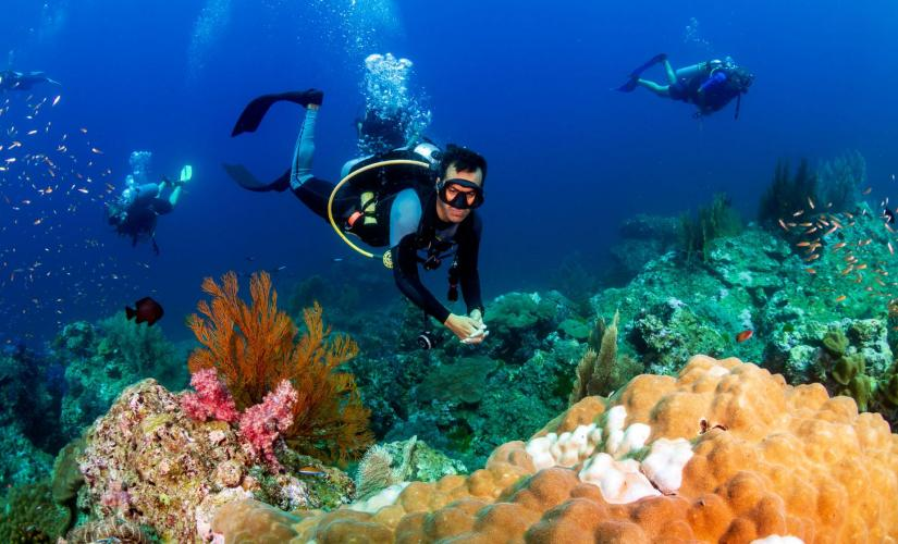 Discover Scuba Dive with PADI Instructor Professional Association of Diving Instructors Grand Cayman