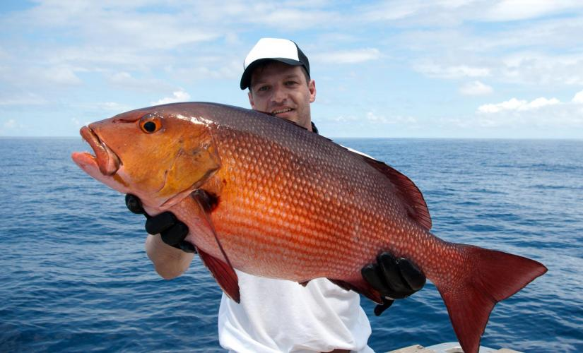 Reef Fishing Charter Day Trip in Grand Cayman