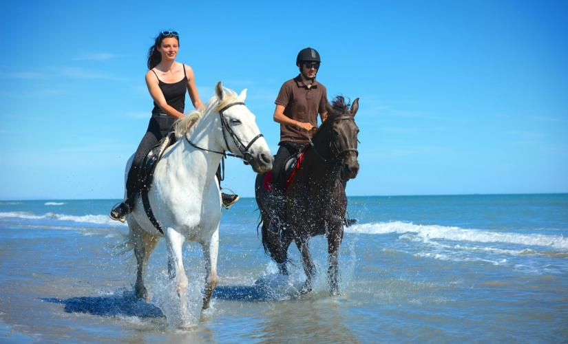 Horse Riding on the West Bay Beach of Grand Cayman | Cruise Port Tour