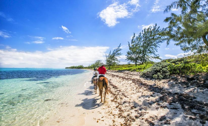 Horseback Ride and Swim in Grand Cayman (West Bay, Caribbean Sea)