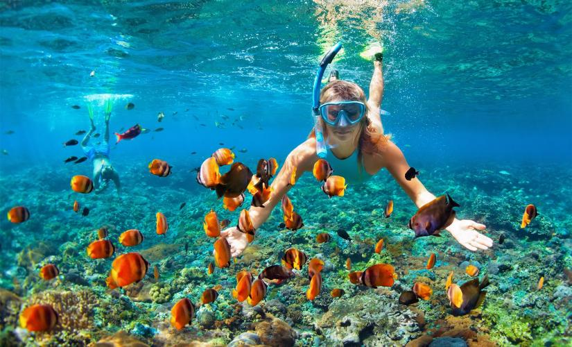 Bambarra Rum Tasting and Snorkeling in Grand Turk (Grand Turk Wall)