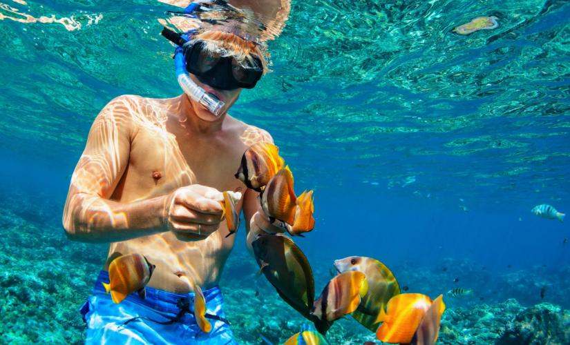 Half Day Boat and Snorkel Adventure in Nassau
