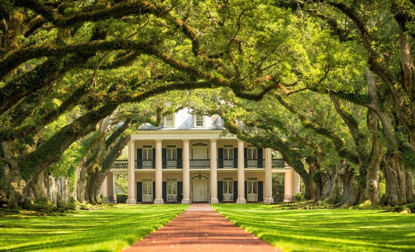 Laura Plantation and Oak Alley Tour in New Orleans (Mississippi River Road)