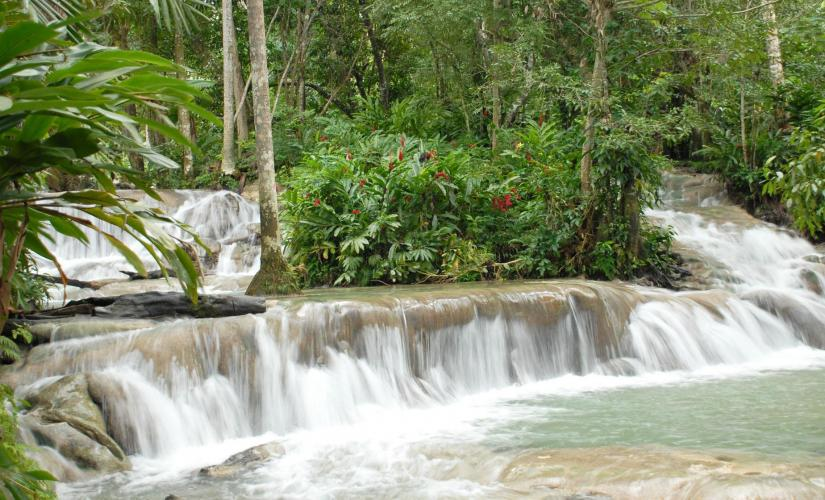 Exclusive Dunn's River Falls and Tubing Tour in Ocho Rios