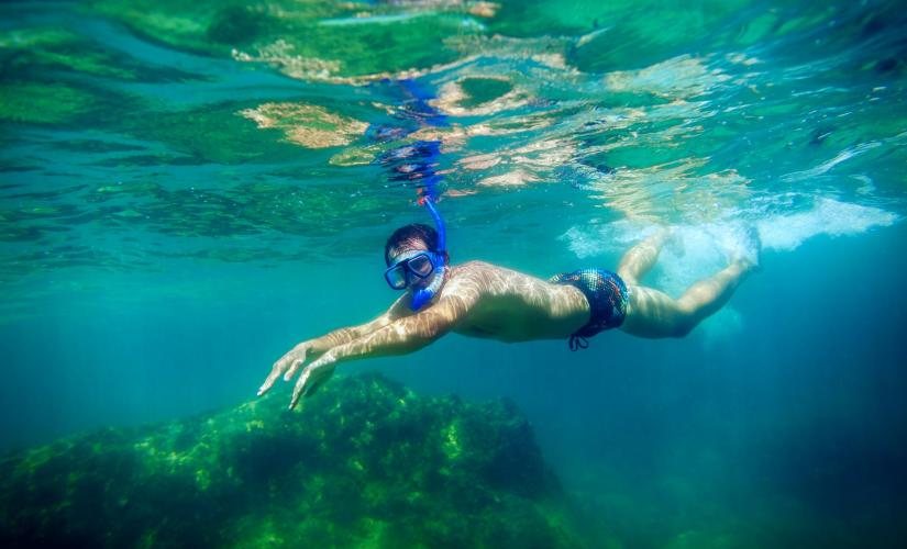 Reef Snorkel by boat in Roatan