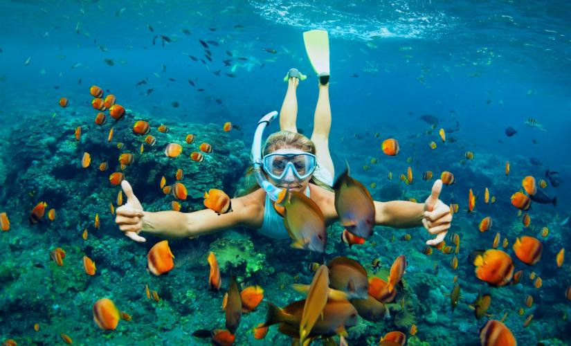 St Maarten Snorkeling Tour at Pinel Island & Oyster Pond