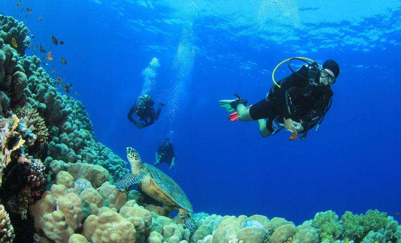 St. Thomas Certified Beach Dive | Cruise Port Tours