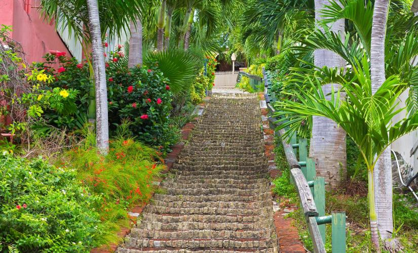 Mountain Top Sightseeing & Shopping at Charlotte Amalie Day Trip in St. Thomas