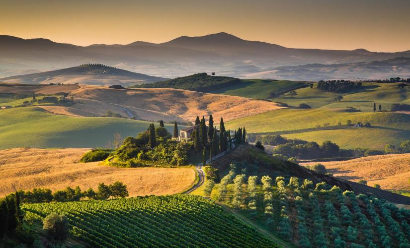 Private Tuscan Village and Wine Tasting Tour from Livorno