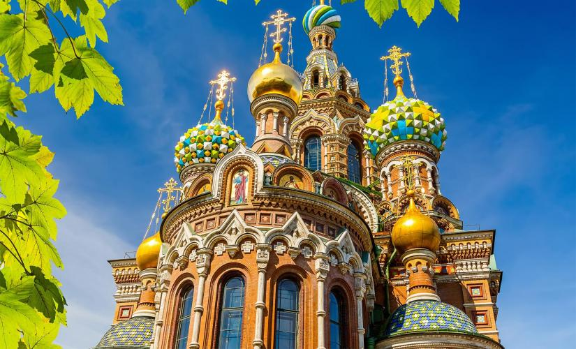 Private Hermitage and Spilled Blood Cathedral Tour in St. Petersburg