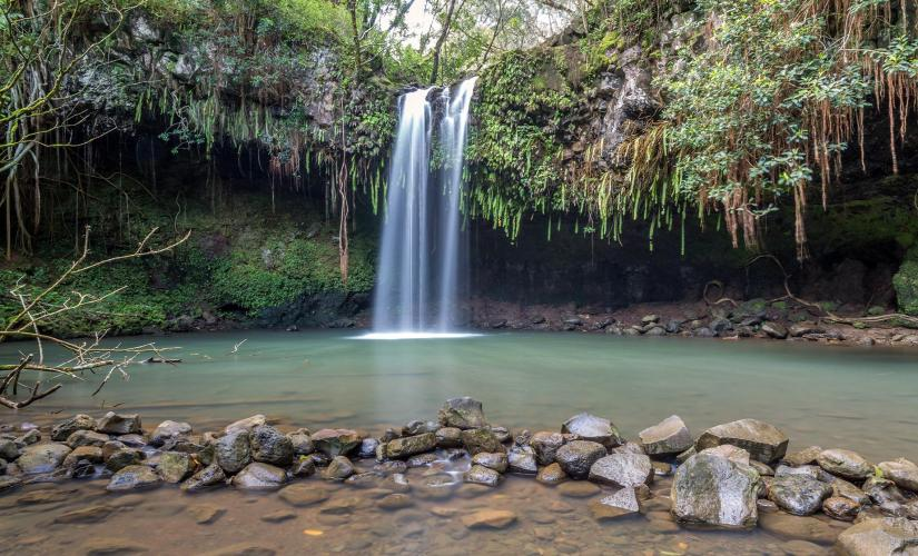 Short Waterfall Walk Tour from Lahaina