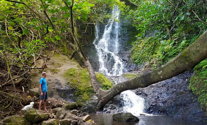 Bike, Hike, Sail and Snorkel Adventure Tour in Oahu (Koolau Mountains, Kewalo Basin)