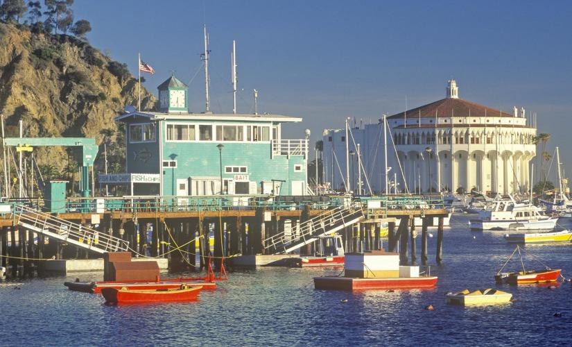 Amazing Catalina Scavenger Hunt Tour (Avalon)