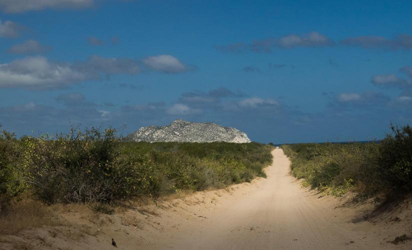 Jeep Adventure to Cabo Pulmo Tour from Cabo San Lucas (National Park)