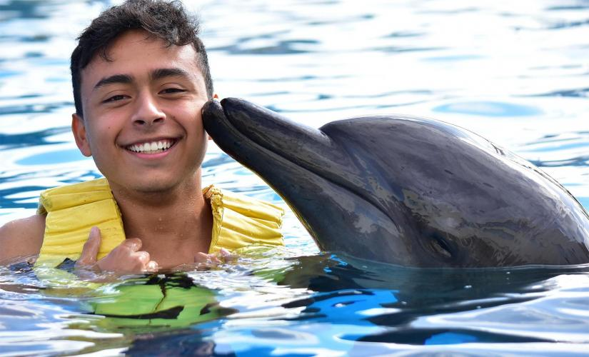 Dolphin Encounter and Water Park Tour in Puerto Vallarta (Aquaventuras)