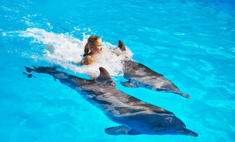 Royal Swim with Dolphins and Water Park Tour in Puerto Vallarta