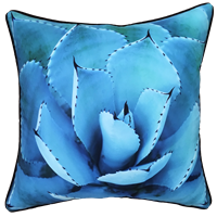 Blue Agave Outdoor Cushion