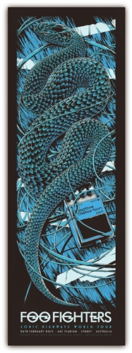 Foo Fighters Concert Poster by Ken Taylor