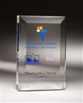 Rectangle Clear Acrylic Award 10""