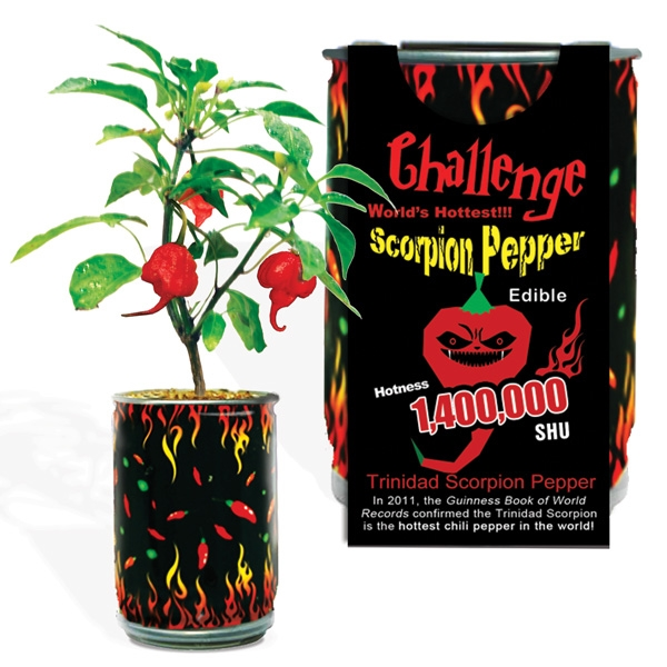 Challenge Scorpion Pepper Magic Plant-1,400,000 SHU