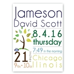 Customized Baby Boy Announcement Canvas Sign