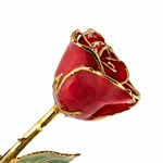 Red Lacquer and Gold Dipped Rose
