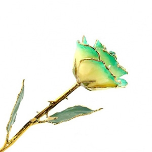 Dark Green Two-Toned and Gold Rose