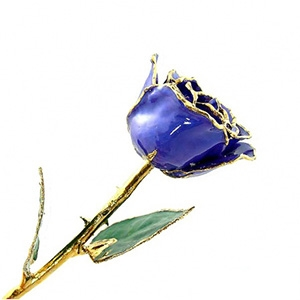 Violet Pearl Lacquer and Gold Plated Rose