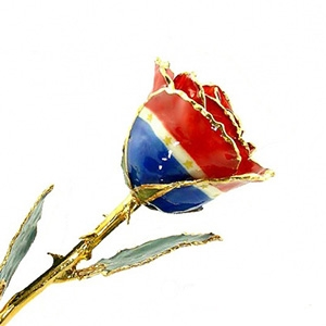 Patriotic Themed Liberty Gold Rose