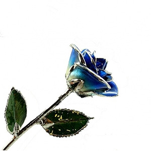 Dark Blue Two-Toned and Platinum Rose