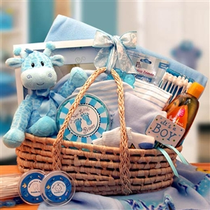 Precious New Baby Blue Carrier Gift Basket - Help Mom and Dad with this Great Baby Gift!