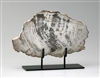 Large Petrified Wood Sculpture