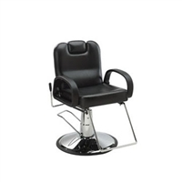 Vance All-Purpose Styling Chair