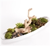 Driftwood Centerpiece with Succulents