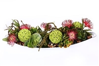 Succulent and Protea Centerpiece