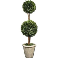 Two Sphere Topiary