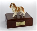 King Charles Spaniel, Standing